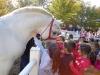 deca su uzivala u kontaktu sa životinjama